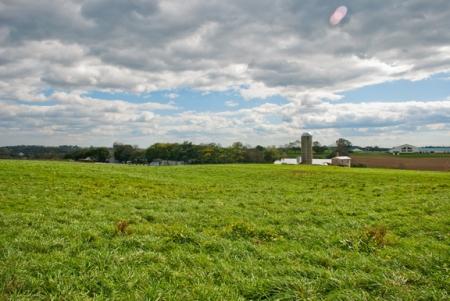 Landscape Penn 1-lo res