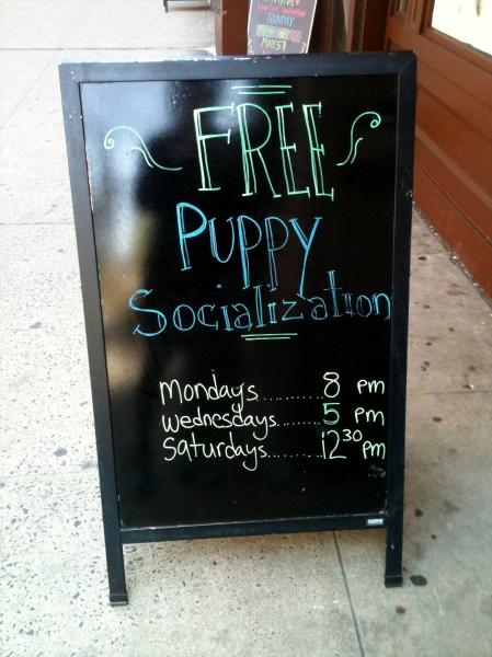 PuppySocial